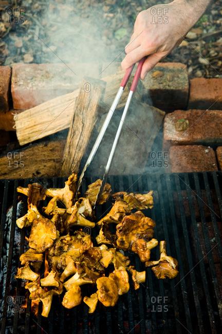 Grilling freshly cut golden chanterelle