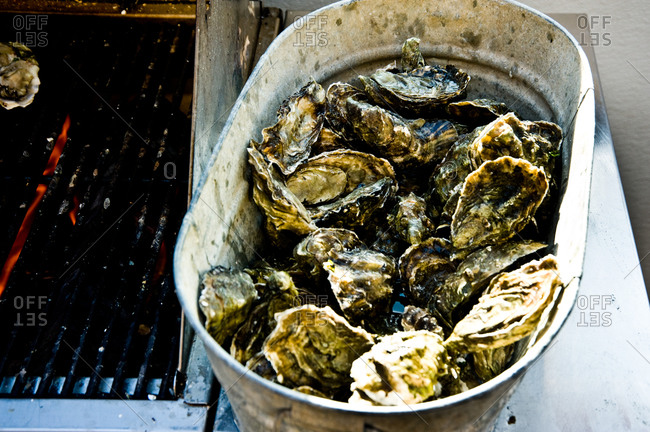 Raw oysters in a bucket next to a grilling grid