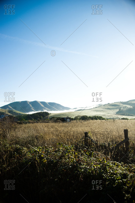 Landscape with green hills in Point Reyes