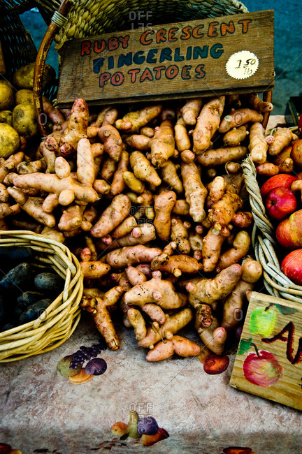 Ruby crescent fingerling potatoes at a farmer's market in Point Reyes