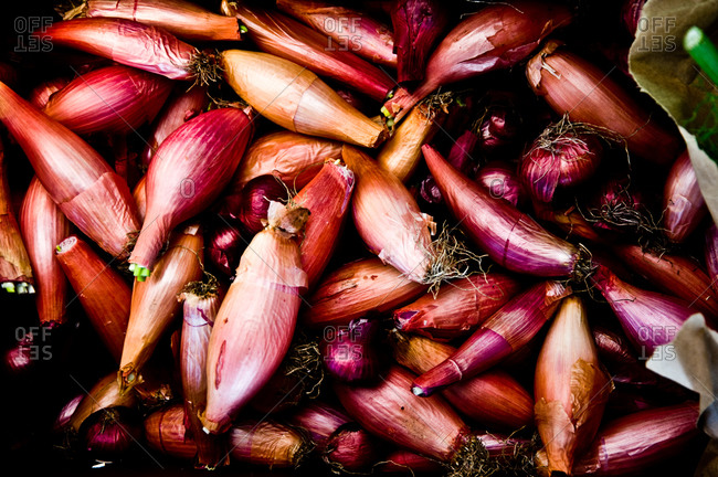 Shallots for sale at a farmer's market in Point Reyes