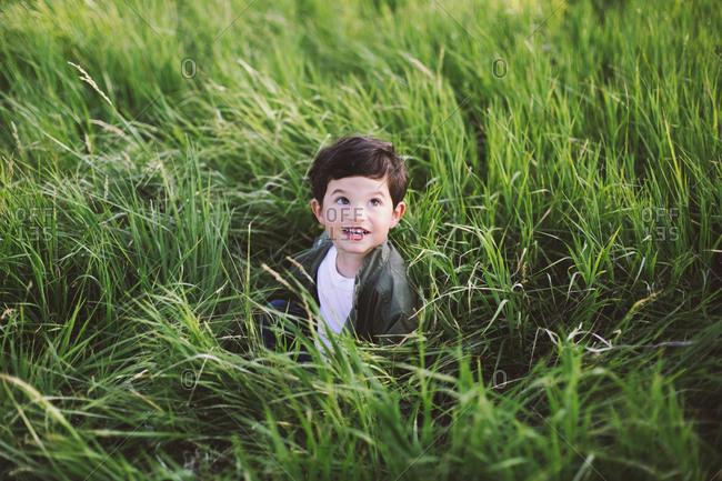 Little boy sitting in high grass