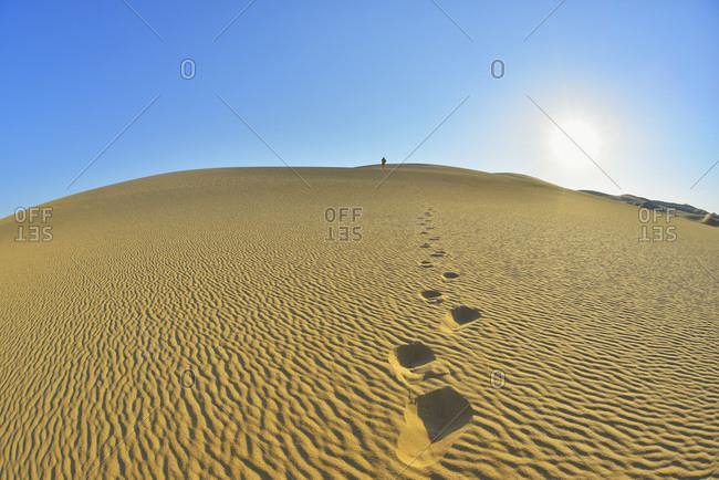 Footprints on sand dune with sun, Matruh Governorate, Libyan Desert, Sahara Desert, Egypt, Africa