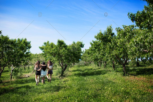 Relaxed friends walking in an orchard