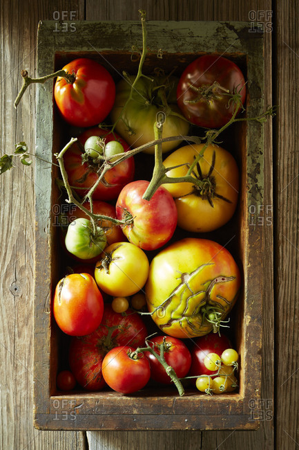 Red and yellow heirloom tomatoes in a wooden box