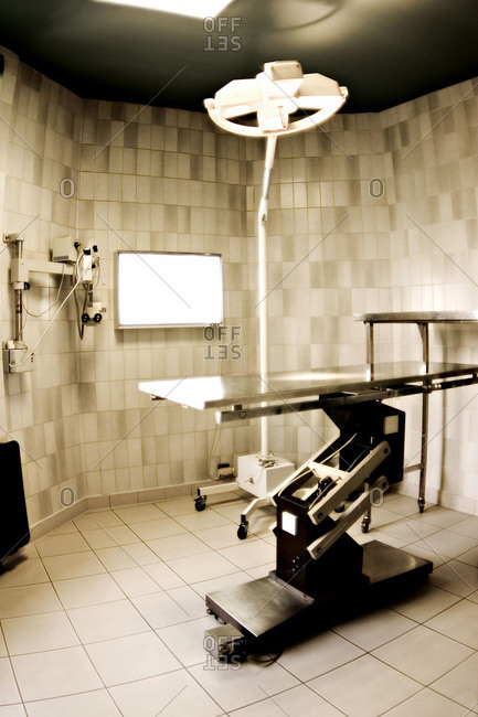 An empty veterinarian operating theater suite