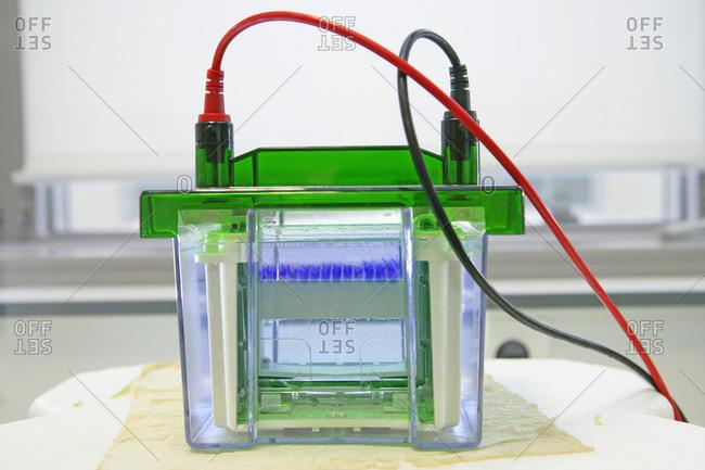 Medical laboratory gel electrophoresis apparatus