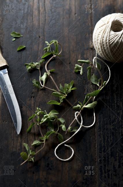 Marjoram, knife and string
