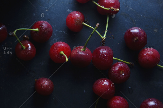 Close up of fresh sour cherries