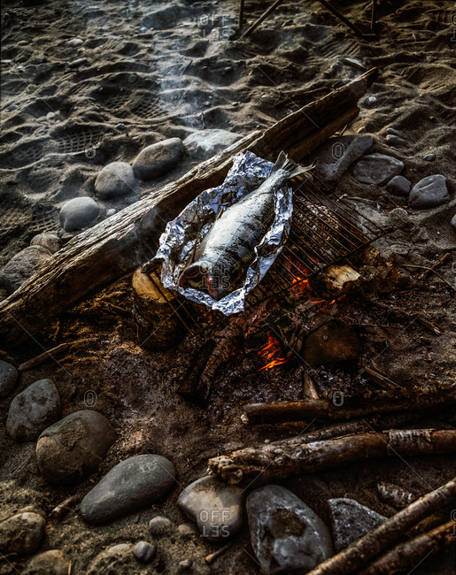 Whole fish on a grid above a campfire