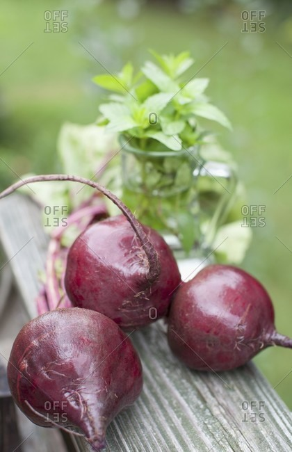 Three whole beets with fresh mint