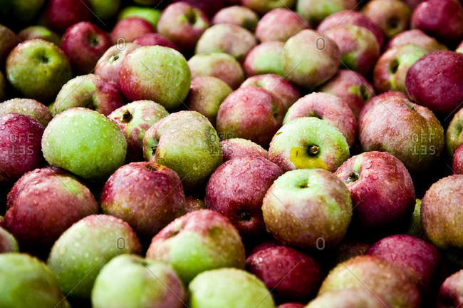 Close up of a pile of fresh apples