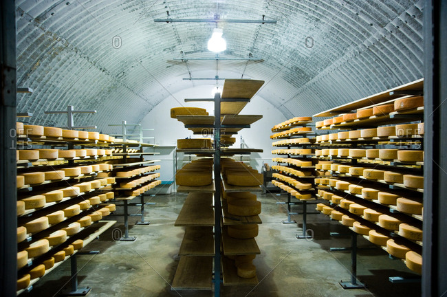 Cheese cellar with ripening raclettes