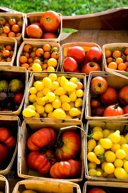 Ripe tomatoes at a farmer's market