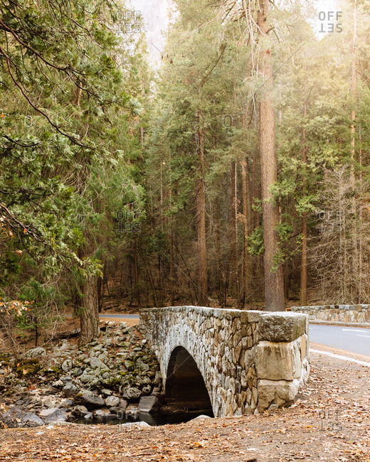 Stone bridge in the nature