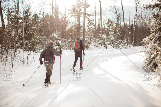 People skiing in a forest in Maine