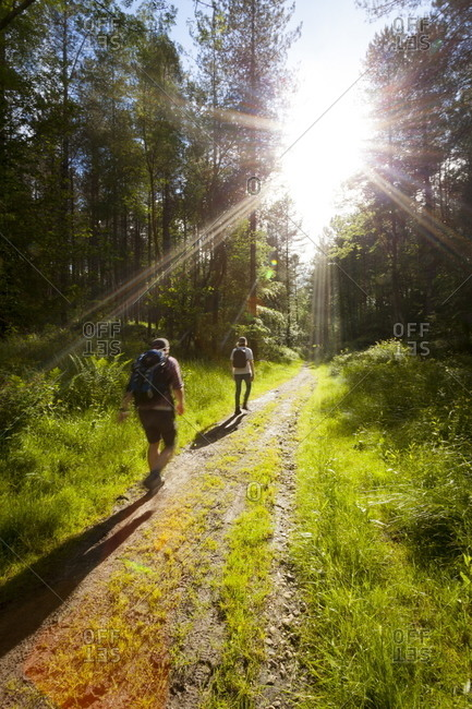 Young men hiking on an outdoor adventure trail in The Chilterns