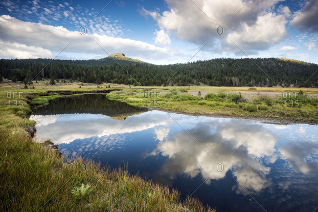 The still water of the West Fork of the Carson River reflects the beautiful clouds overhead in Hope Valley, California
