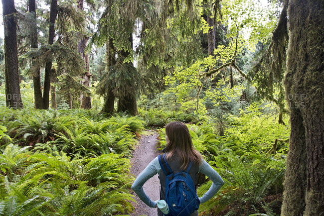 Woman exploring the Hoh Rainforest, Olympic National Park, Washington, USA