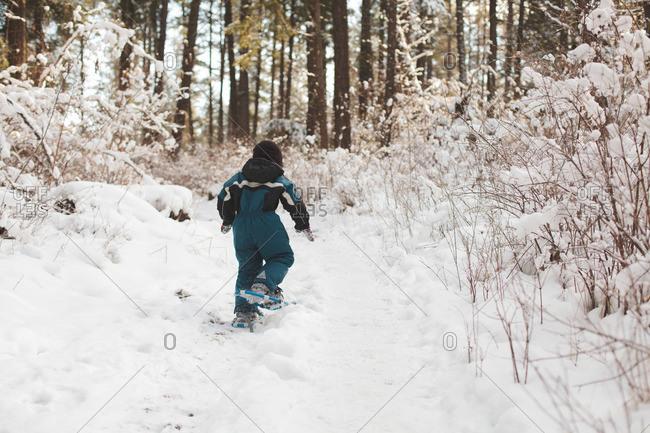 Rear view of boy walking in snowy forest