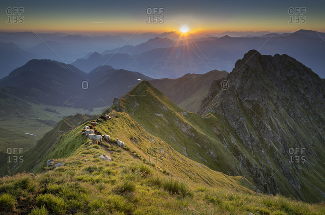 View from Kellerjoch at sunrise against the morning sun