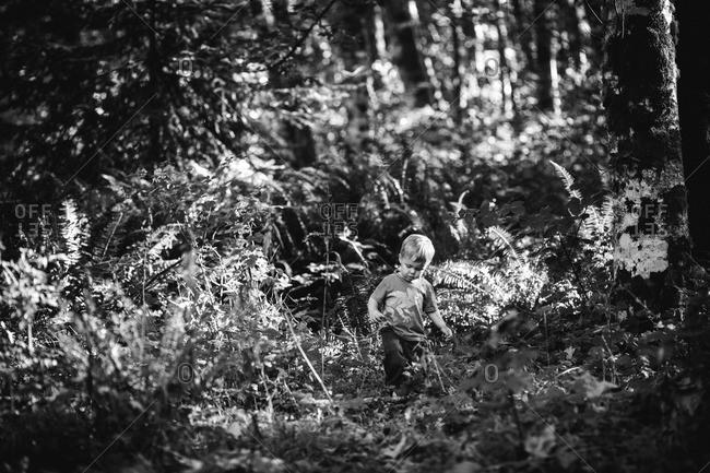 Little boy walking in a dense forest
