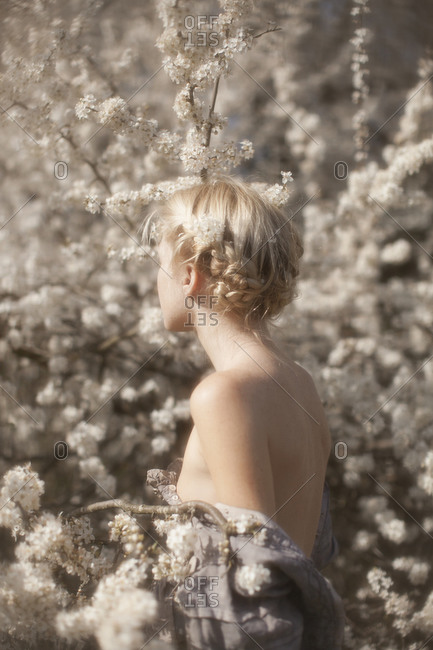 Back view of a girl in a cherry blossom tree