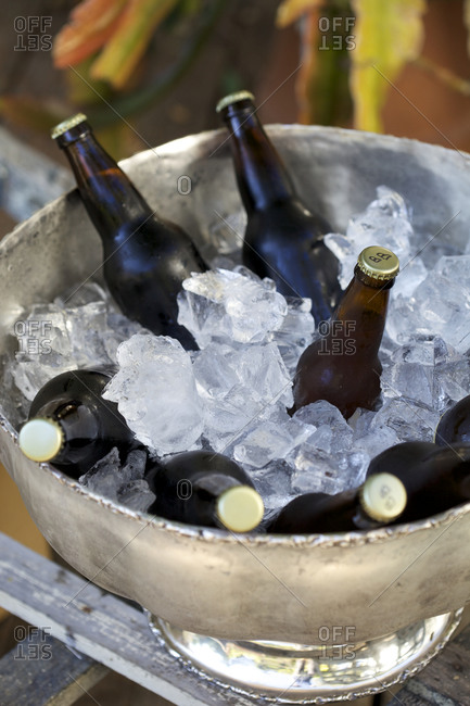 Home brewed beer kept cold in silver ice bucket