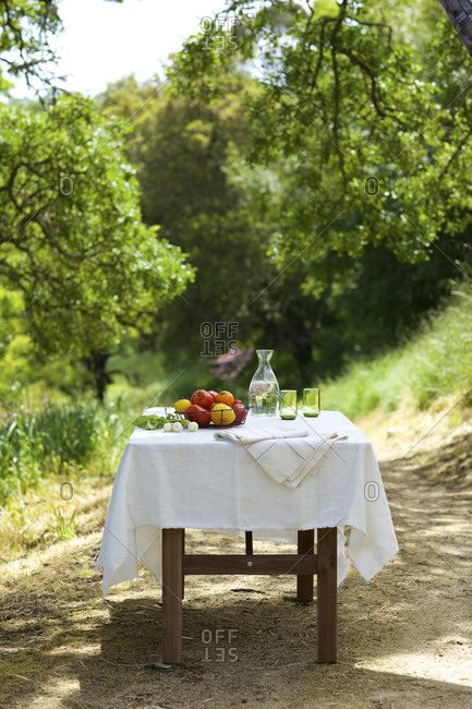 Outdoor table set with fresh vegetables