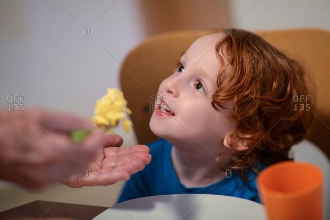 Hand feeding redhead boy