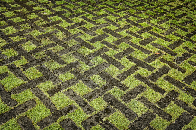 Close up of grid patterned lawn