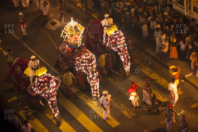 Kandy, Sri Lanka - August 22, 2010: Elephants covered in costumes and lights at the Esala Perahera parade in Kandy, Sri Lanka
