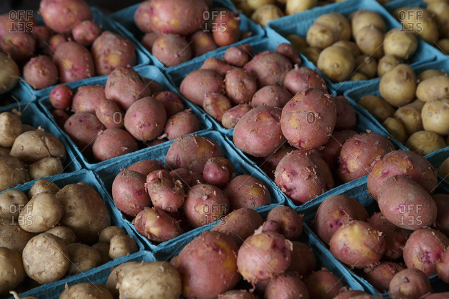 Close up of potatoes in a farmer's market