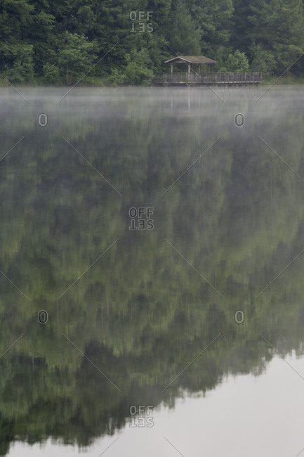 Trees reflecting on a lake in the Jefferson National Forest
