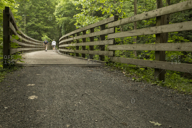 People hiking along the Virginia Creeper Trail
