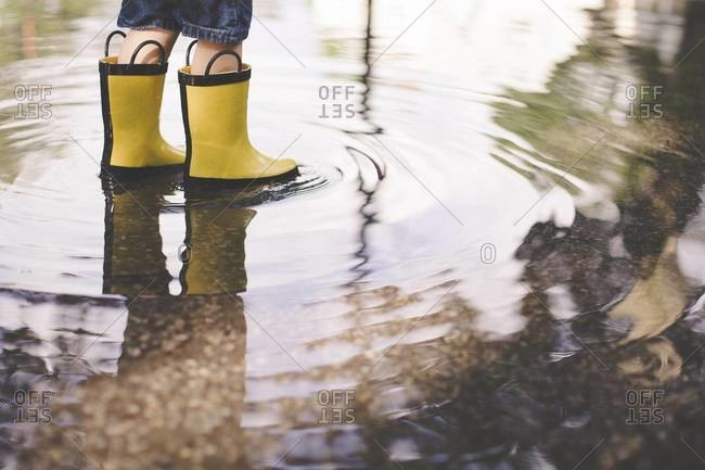Boy in yellow boots standing in a puddle
