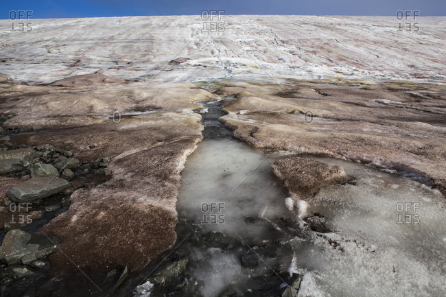 Ice algaes at the Buenos Aires Glacier nearby the Esperanza base in Antarctic