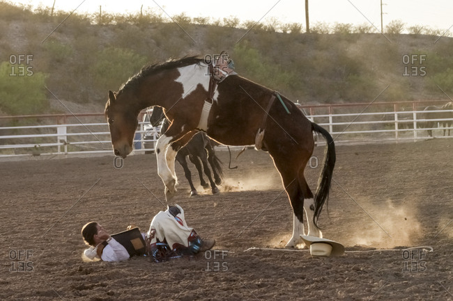 New Mexico, USA - May 11, 2013: Man falling off a horse after bareback bronc riding at a rodeo in Truth or Consequences, New Mexico, USA