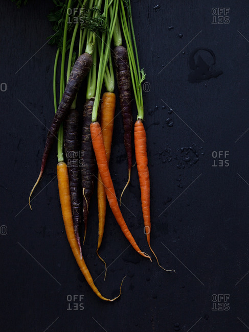 Washed black and orange carrots with stems