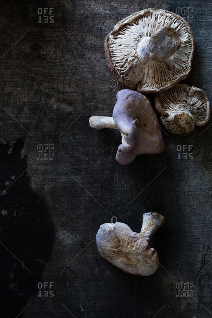 Top view of mushrooms