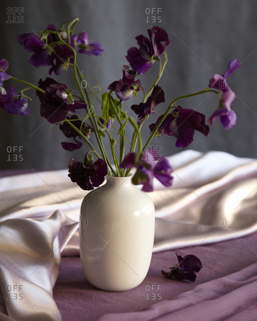 White vase filled with purple flowers on table