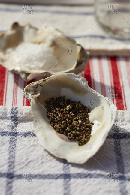 Oyster shells used as salt and pepper holders
