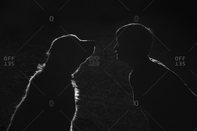 Silhouette of a boy and his dog