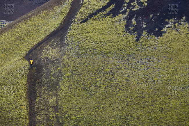 Man climbing moss covered volcano, Landmannalaugar, Southern Highlands, Iceland