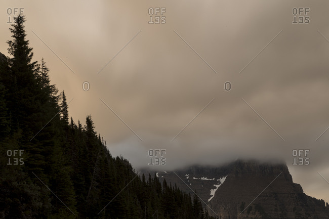 Damp fog hovers above a forest in the mountains