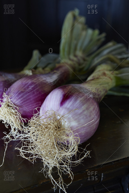 Close up of fresh onions