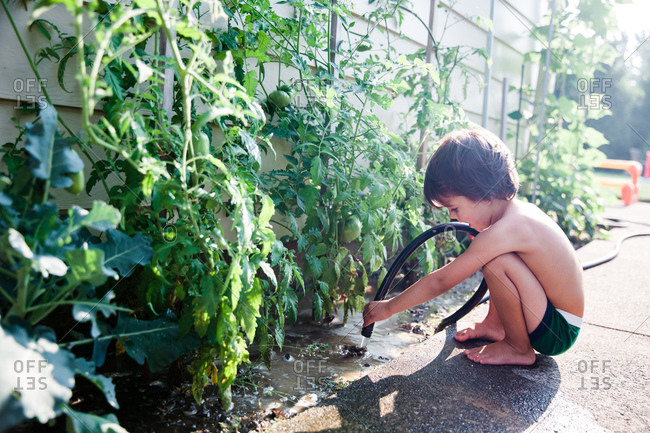 Young boy watering plants