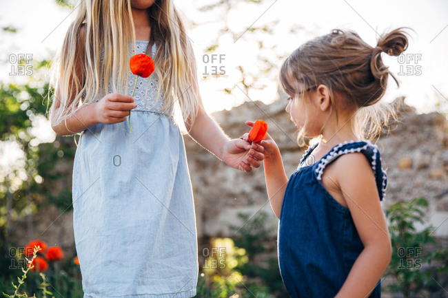 Girl giving a poppy flower to her sister