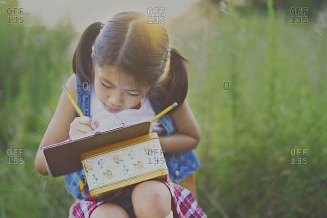 Little girl drawing in a meadow