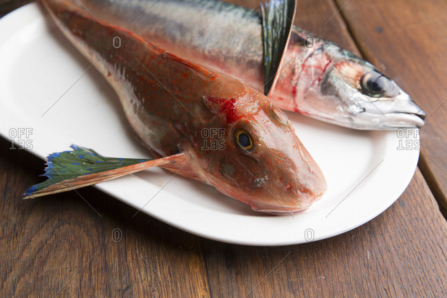 Two types of fish on oval-shaped plate